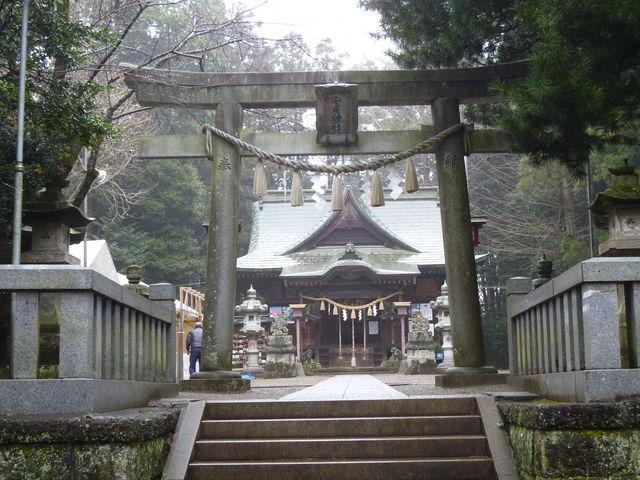 金運 神社 東京 白蛇 場所 どこ ご利益 近郊 スポット